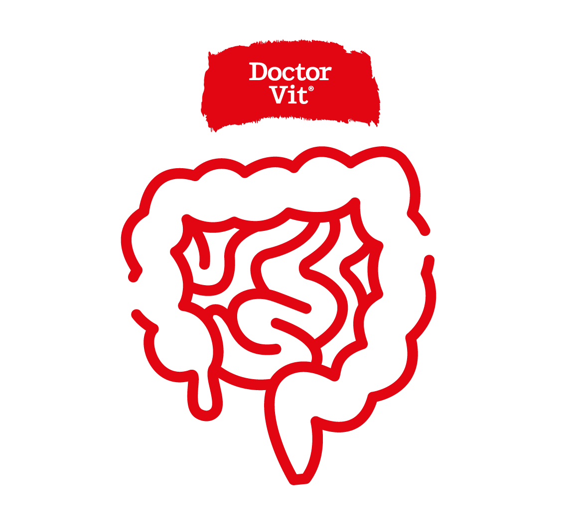Doctor Vit Intestinos
